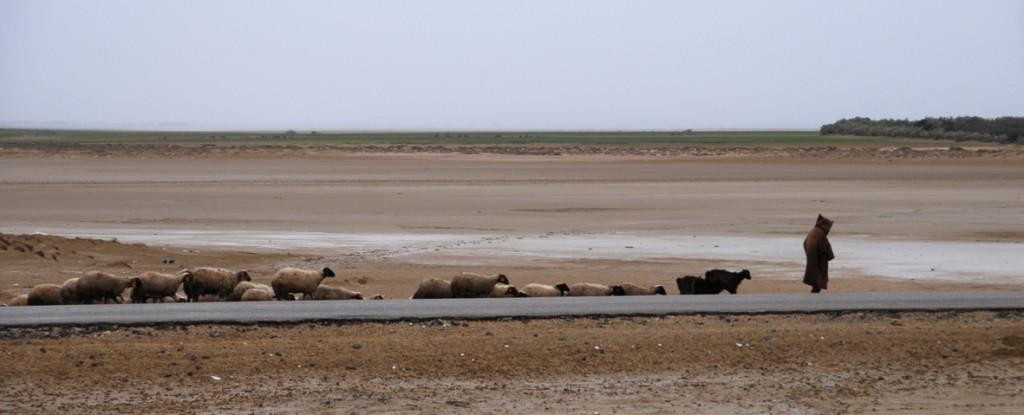 Lagune littorale de Halq Minjil