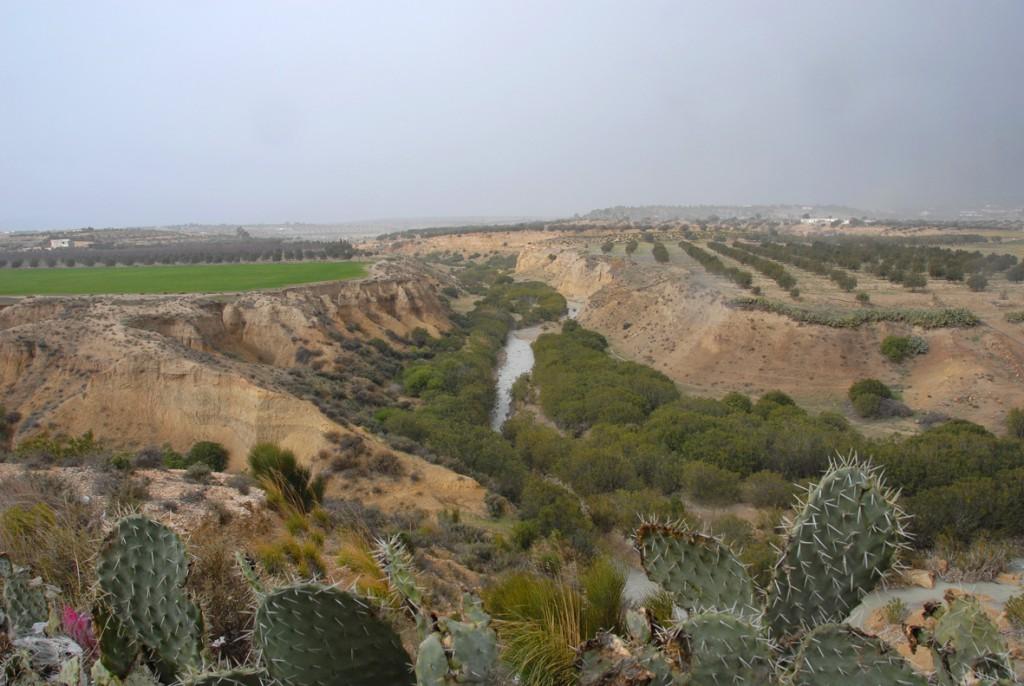 l'Oued Jilf-Maarouf